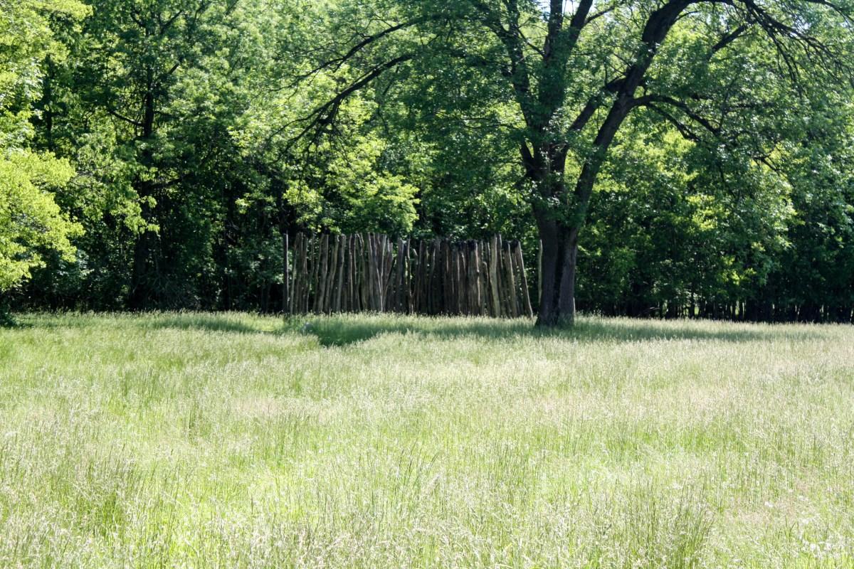 Remnants of palisade wall