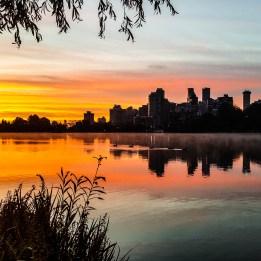 Stanley Park Sunrise