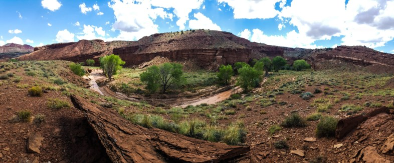 Panorama of the creek/trail