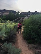Rounding the bend into the foliage along the Cave Spring Trail in Canyonlands National Park