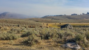 Wildfire smoke hangs over Lamar Valley