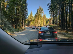 A line of cars waits at a gate to enter Yosemite National Park