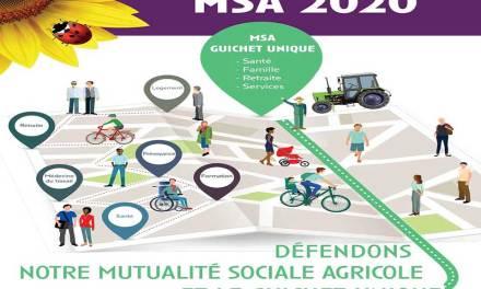 Elections MSA 2020 – Nos listes gagnantes…