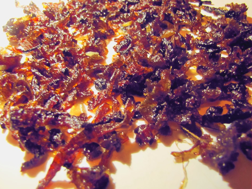 caramelised_onion