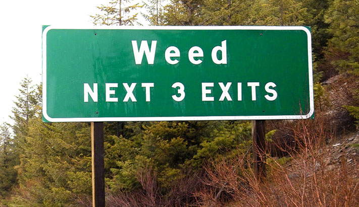 Weed Exits