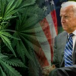 Joe Biden and Marijuana
