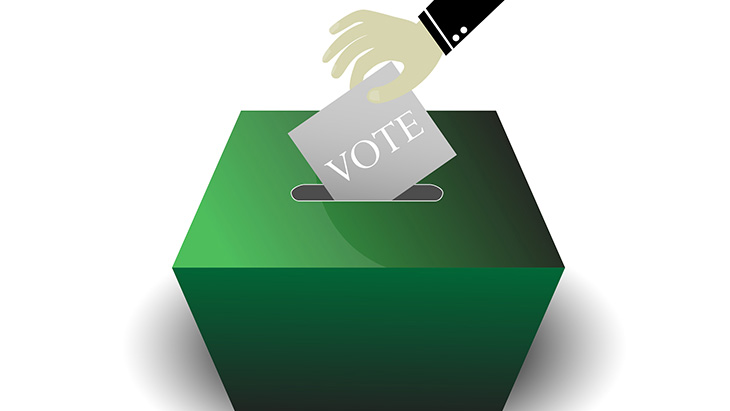 Marijuana and Voting