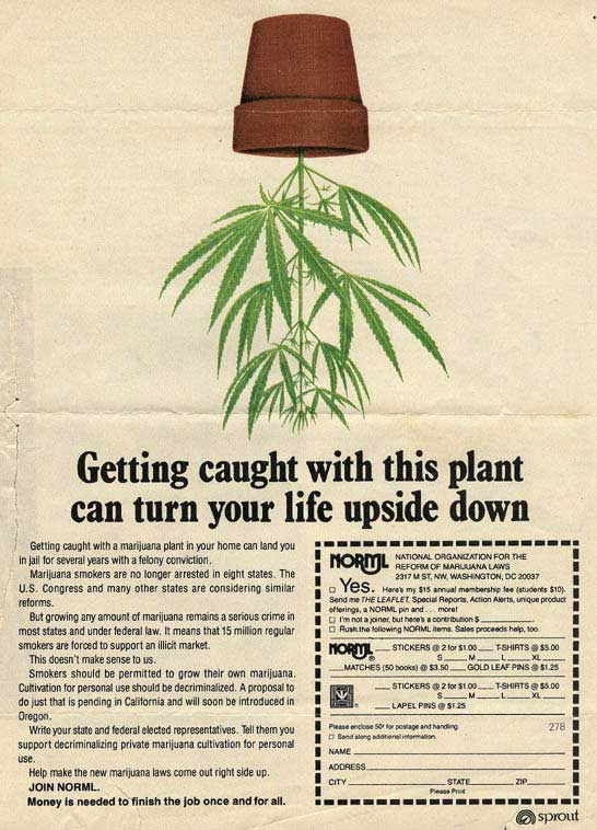 NORML Ad