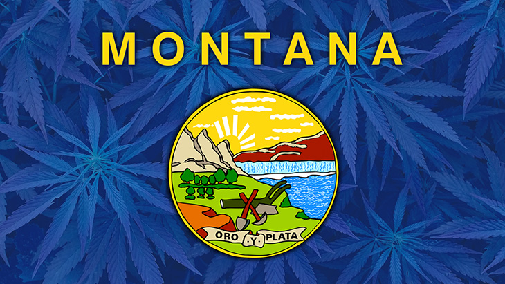 Montana Marijuana Laws