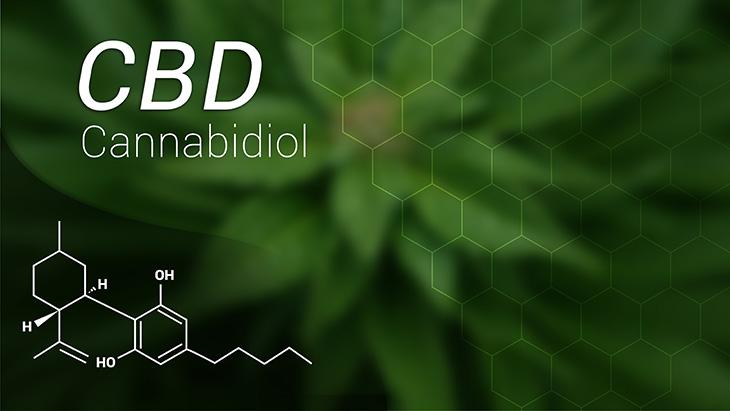 CBD Administration Mitigates Cocaine Dependency in Animals - NORML 2