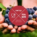 Tapones silicona BfR FDA