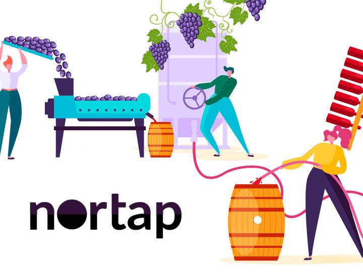 Tapones para Barricas de Vino