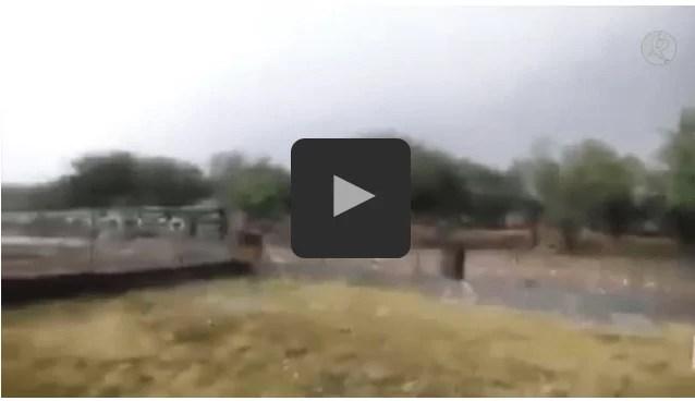 Falso vídeo de la granizada en Sierra de Gata