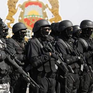 Morocco arrests seven terror suspects