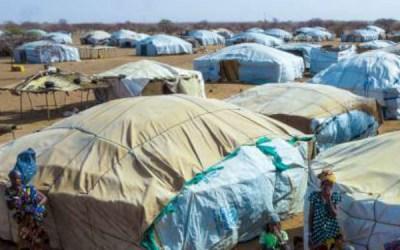 The coronavirus in the Sahel
