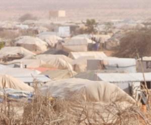 Niger: Humanitarian workers kidnapped in Tillaberi