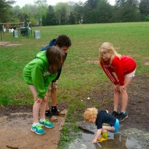 Puddle Science