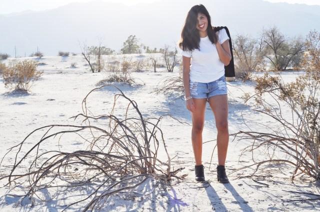 Palm Springs_1033