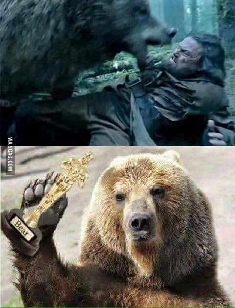 Bear 1 Leo 0
