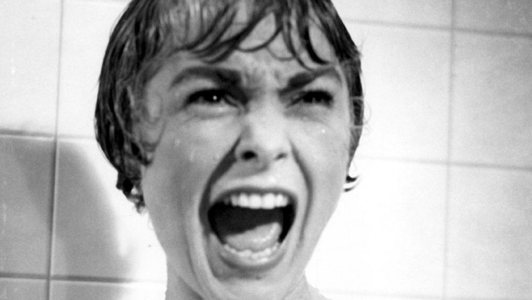 """It was the knife that, a moment later, cut off her scream. And her head."" - Robert Bloch, Psycho. Janet Leigh As Marion Crane in Hitchcock's Psycho (Psycho, Paramount Pictures)"