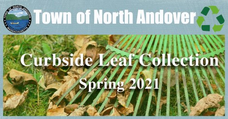 Spring leaf collection 2021.jpg