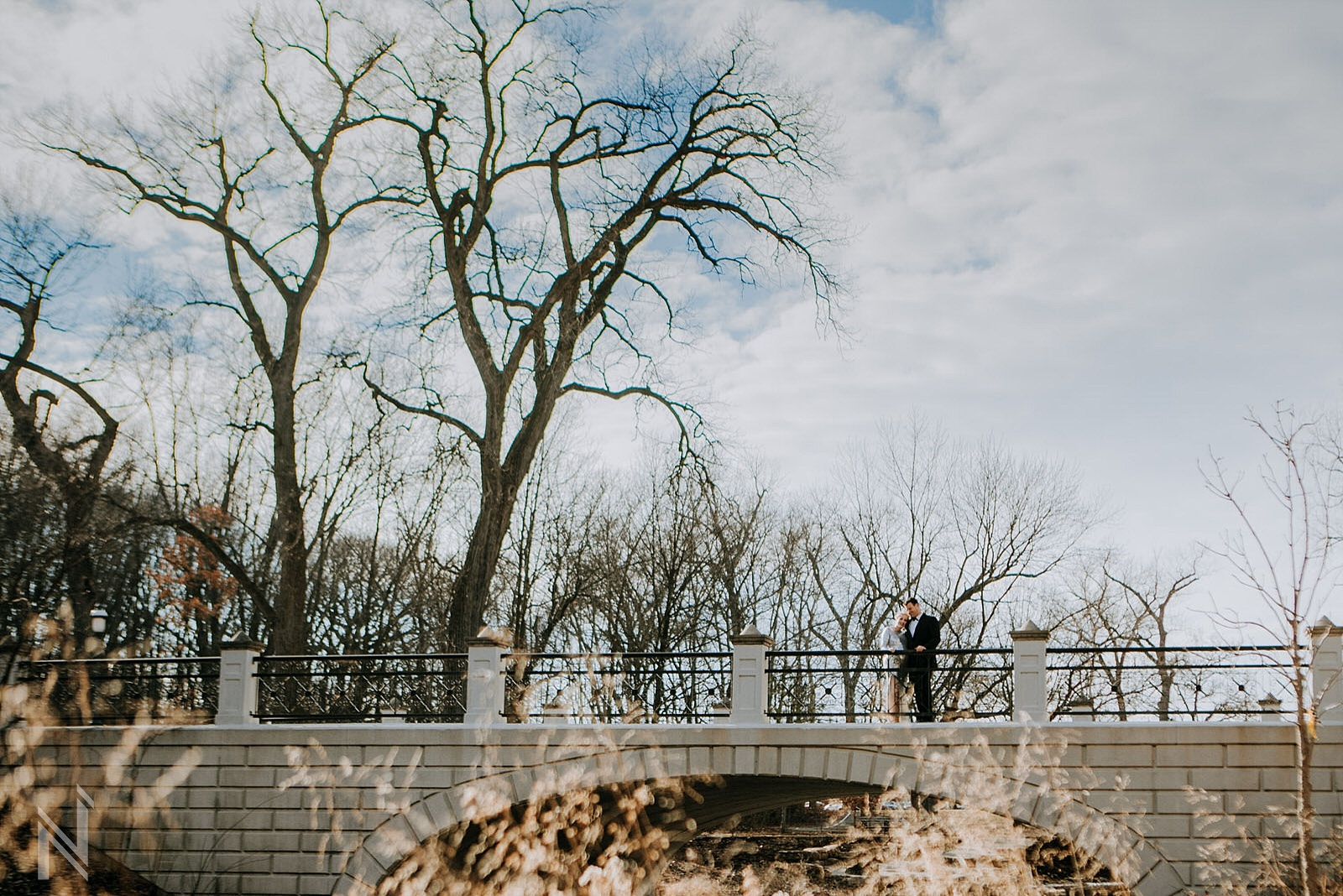 Ali and Marty Formal Maternity Photography Session with their Pitbull Dog at The Muny in Forest Park by St. Louis Family Photographers North Arrow Creative