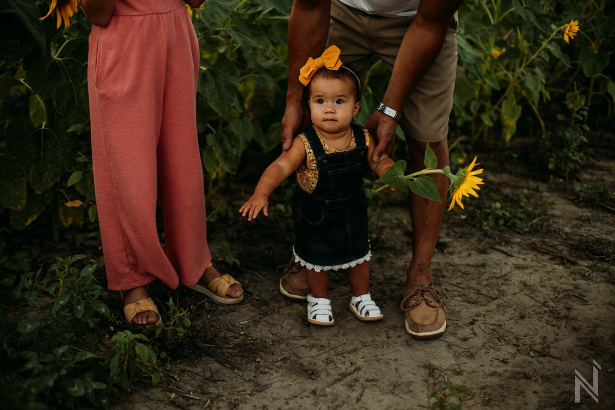 ST-LOUIS-BEST-LIFESTYLE-FAMILY-PORTRAIT-PHOTOGRAPHY-SUNFLOWER-FIELD-COLUMBIA-BOTTOM-NORTH-ARROW_0018