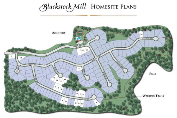 Neighborhood Site Plan Blackstock Mill