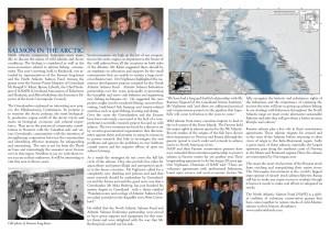 Salmon in the Arctic