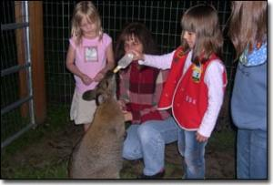 Tours at Fall City Wallaby Ranch