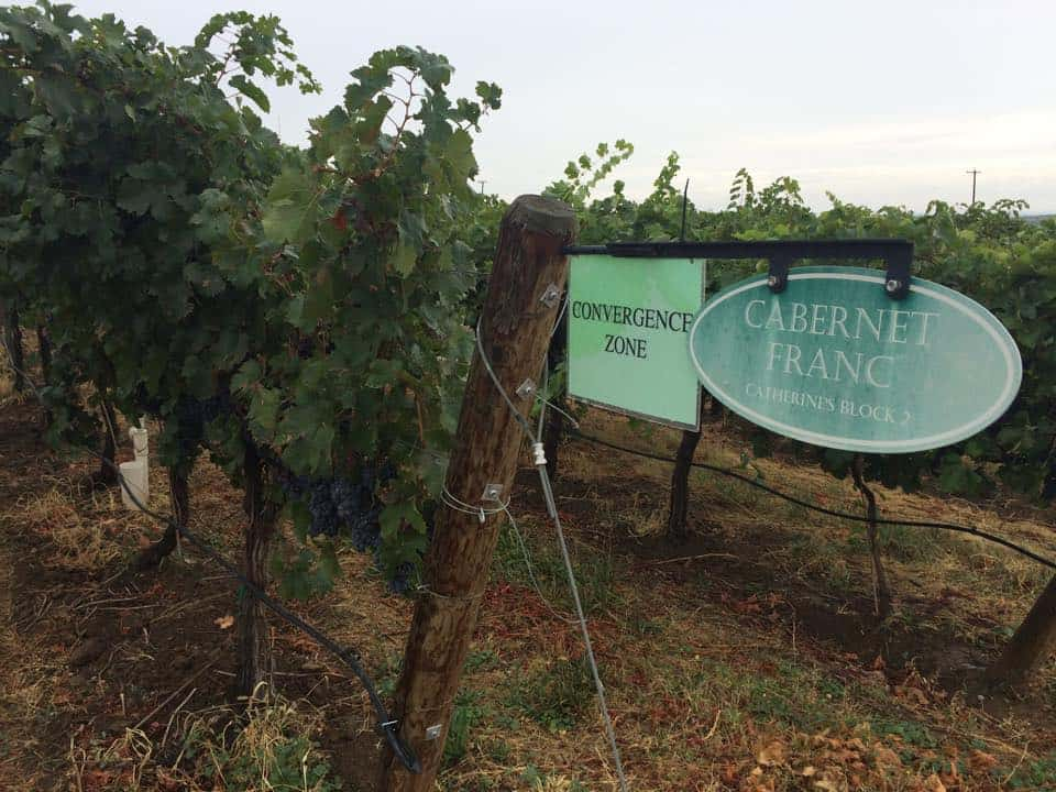 Convergence Zone Winery