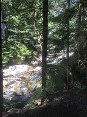S Fork Snoqualmie River along Franklin Falls Trail