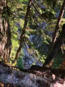 13. Trail on Cliff Above Denny Creek