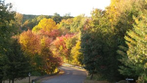 Northbrook in Fall by Colleen Carswell