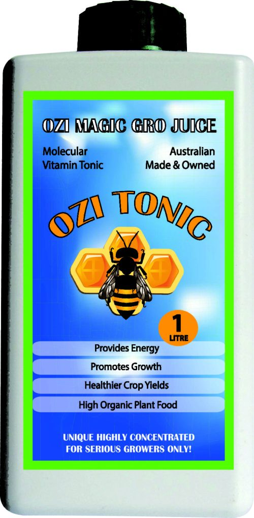 Ozi Magic – Ozi Tonic