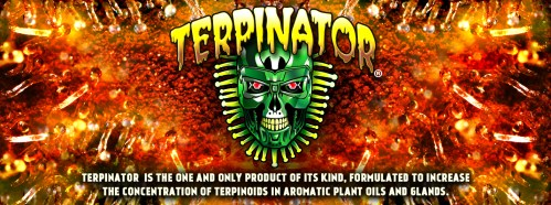 Left Coast – Terpinator