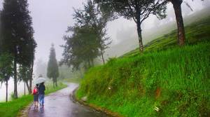 Heavy Rains, Meghalaya, Arunachal, Assam