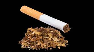 Tobacco use rises in Assam, Tripura, and Manipur says report