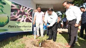 Assam: 5.33 lakh saplings planted by NF Railway in 2017-18