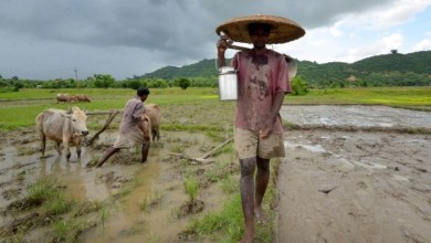 Assam: Sonowal cabinet approves Rs 600 crore farm loan waiver