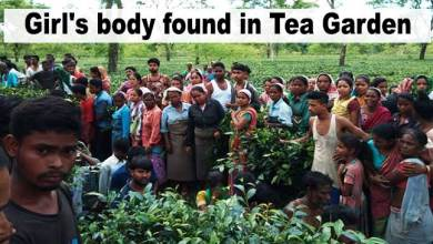 Photo of Assam:Young Girl's body found in Barbaruah Tea Estate