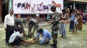 Assam: Indian Army Conducts VET AID Camp in Darrang