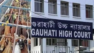 AssamCattle Syndicate: PIL filed at GHC seeking CBI enquiry