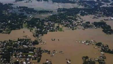 Photo of Assam Flood: over 24 lakh people affected, Kaziranga under flood