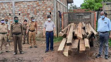 Photo of Assam: Massive crackdown on timber smugglers in Hailakandi, sizeable swan timbers seized