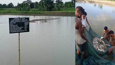 Assam on the way to becoming self sufficient on fish production front