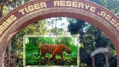 Assam: Minister Suklabaidya reviews status of Orang National Park