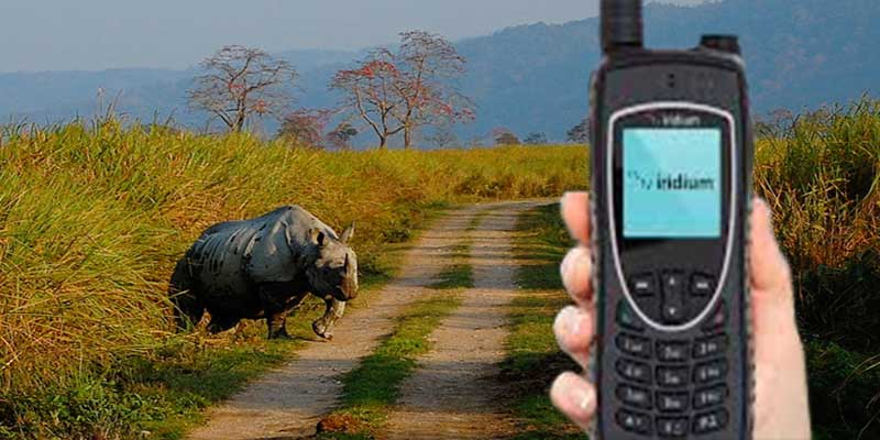 Assam: KNP personnel equipped with satellite phones; to give edge over poachers