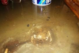 drain-sewage-backup