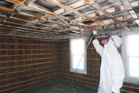 mold-ceiling-paint